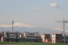 bassetta_montagna2