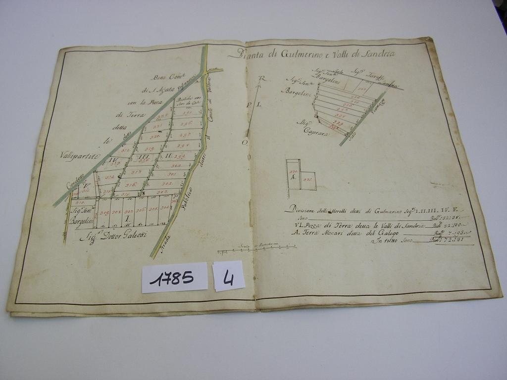 IMGP0118