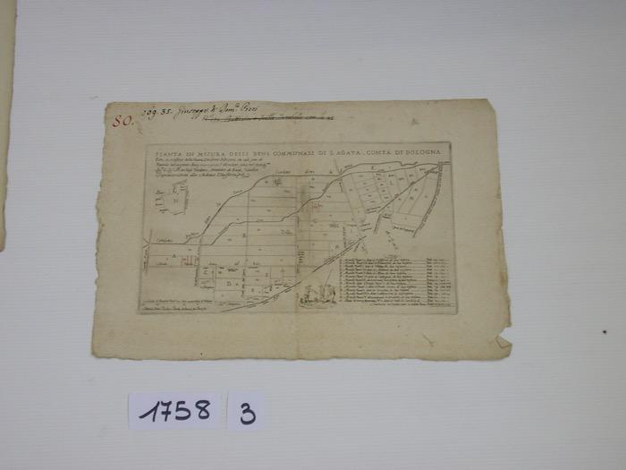 IMGP0237