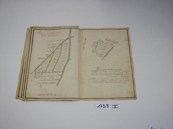 IMGP0243