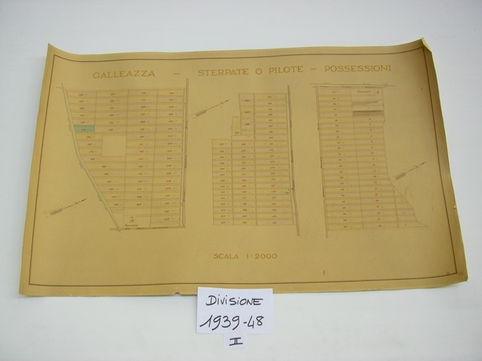 IMGP0190