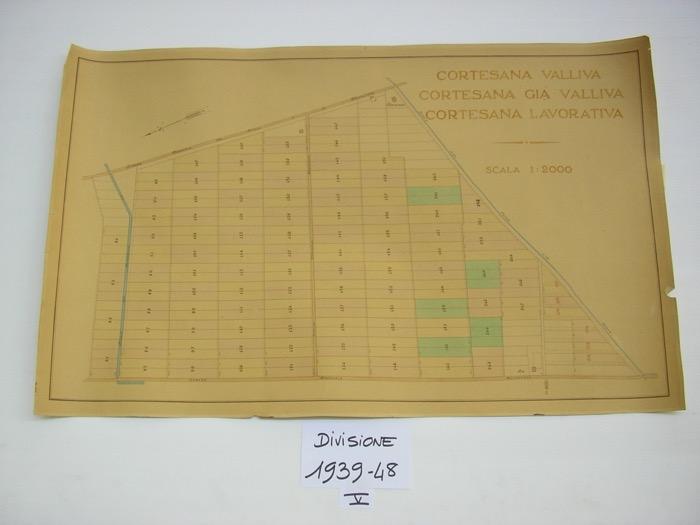 IMGP0193