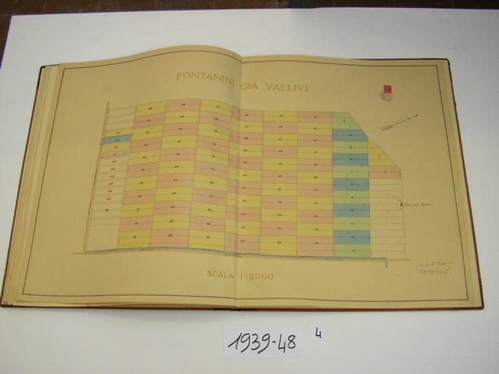 IMGP0217