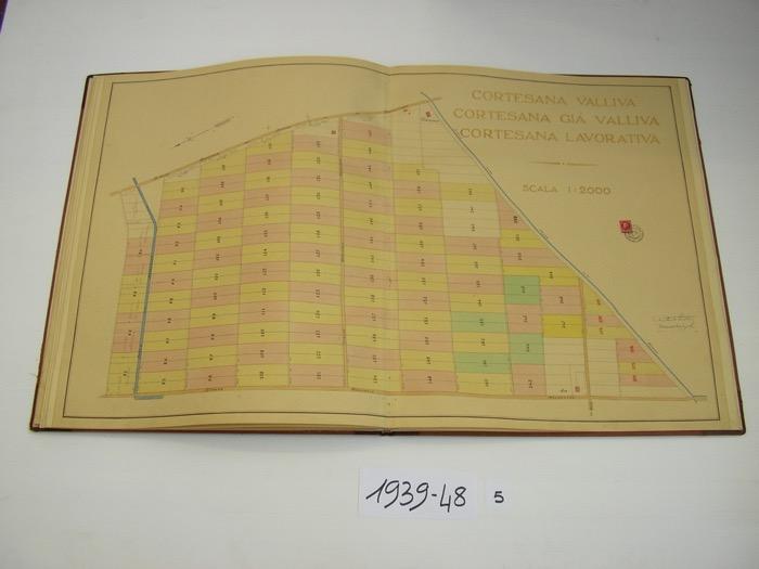 IMGP0218