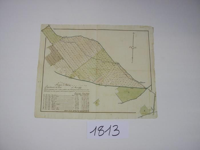 IMGP0231