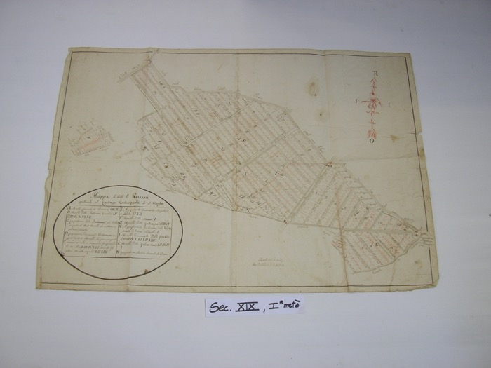IMGP0251
