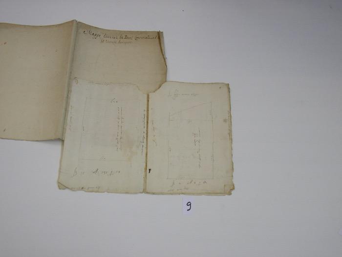 IMGP0268