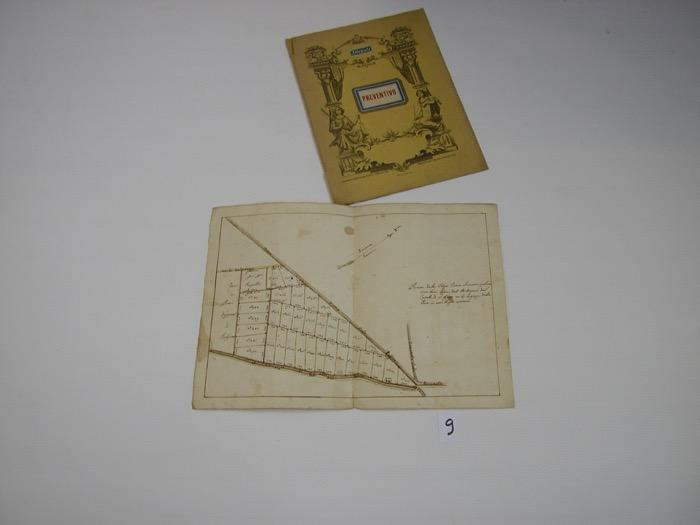 IMGP0282