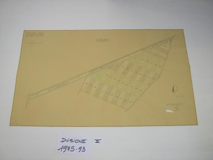 IMGP0298