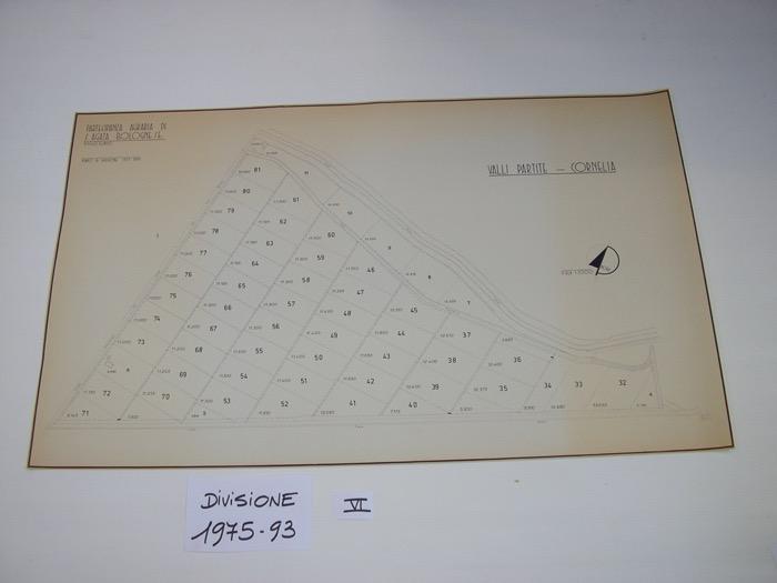 IMGP0301