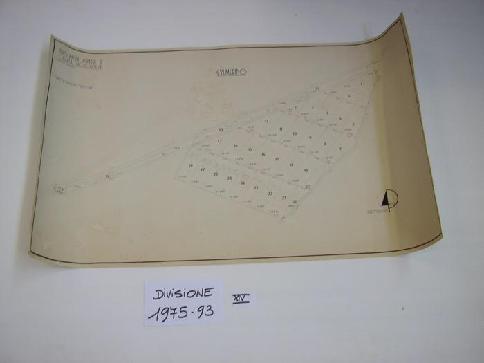 IMGP0309